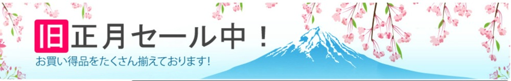 EXPANSYS JAPAN、旧正月セールでSIMフリー「iPad Air」「iPad mini Retina ディスプレイモデル」をなどを値下げ中!