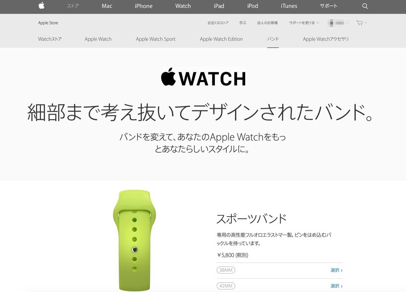 Applewatchband1