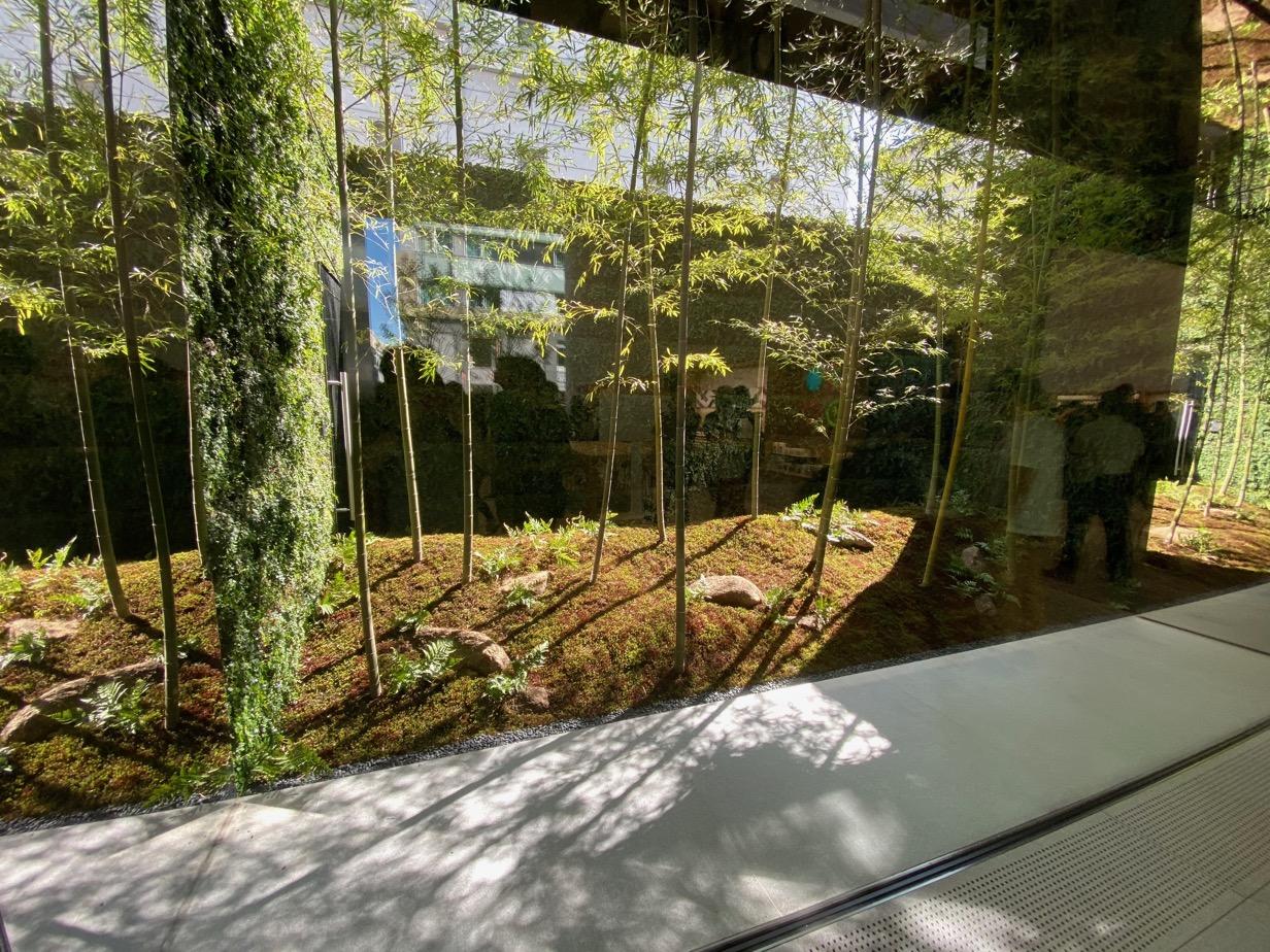 Apple 福岡 庭